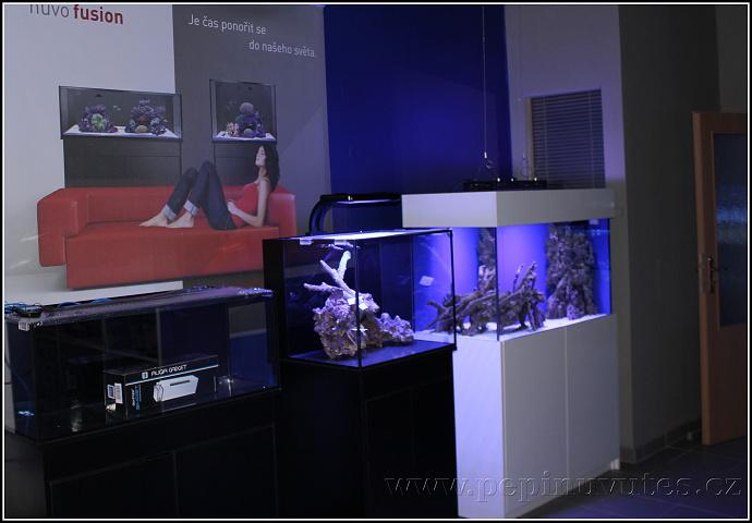 Vystavená akvária