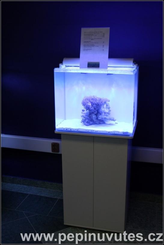 Nuvo aquarium Mini 38