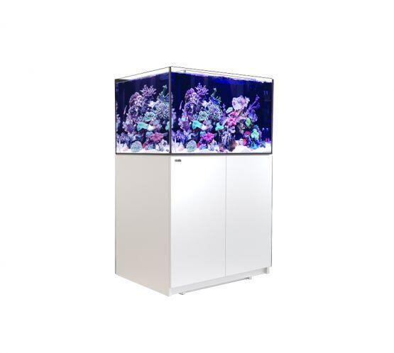 Red Sea Reefer XL 300 bílá