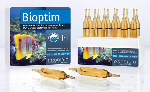 Prodibio Bioptim 12 ampulí