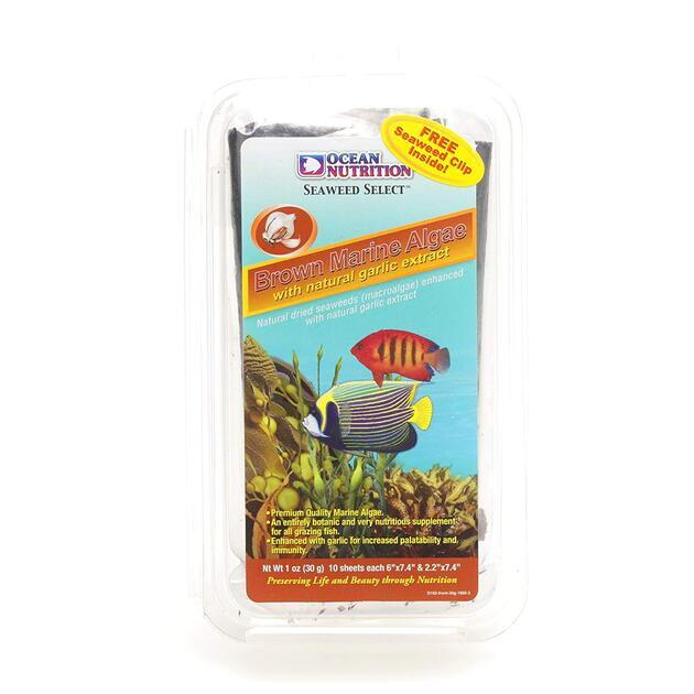 Ocean Nutrition Brown Marine Algae 30 g s česnekem