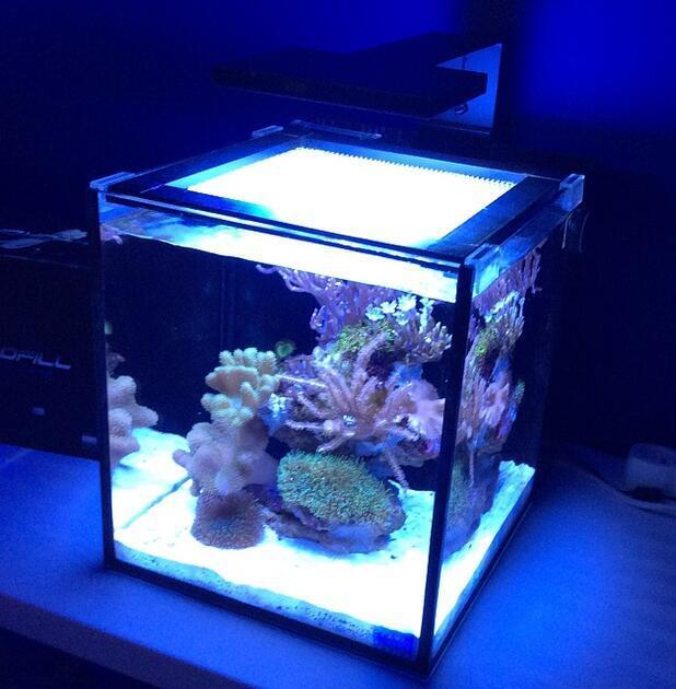Mořské akvárium NUVO 10 zařízené 40 litrů LED clamp - 1