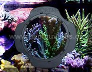 Portal Aquarium Viewer-stěrka na sklo s integrovanou lupou - 1/4