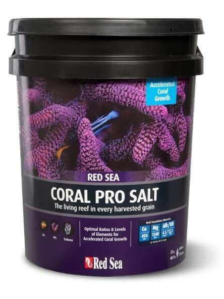 Mořská sůl Red Sea coral pro 22 kg kbelík - 1