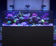Red Sea Reefer-S 1000 černá - 2/4