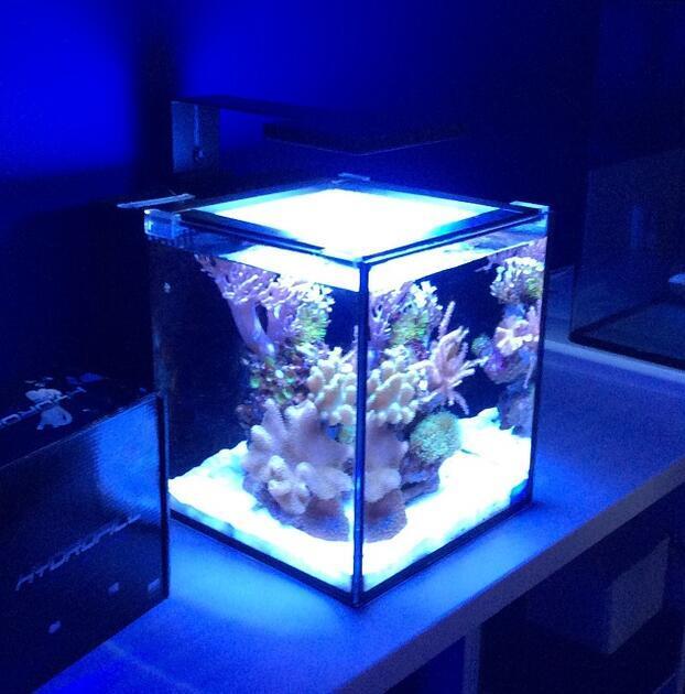 Mořské akvárium NUVO 10 zařízené 40 litrů LED clamp - 3