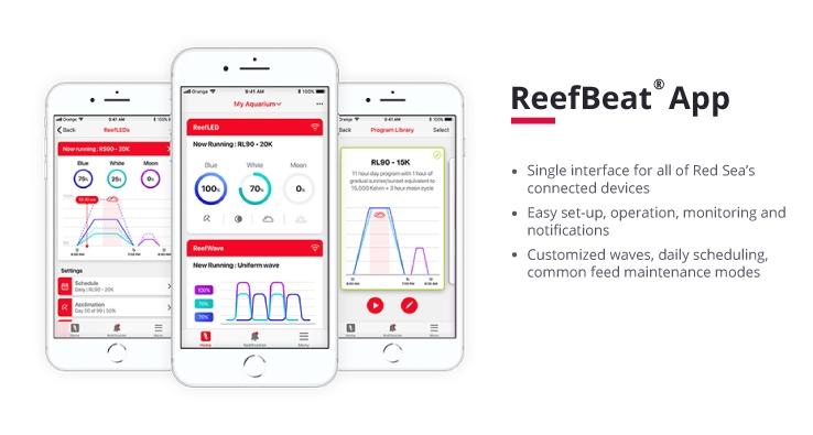 Red Sea App