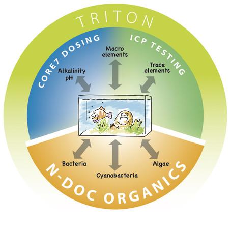Triton testování